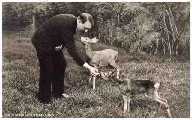 hitler deer 1