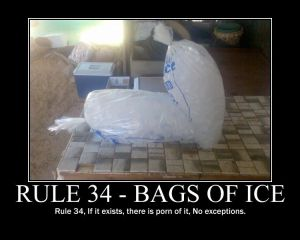 rule_34_ice_by_the_kitsune_warrior
