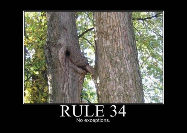 rule_34_no_exceptions_9a5