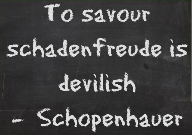 tosavorSchadenfreudeScreenshot