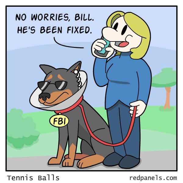redpanels_maybe_wrong_hillary-clinton-fbi-comic