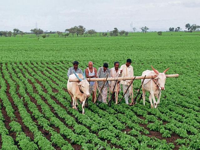 ruralindia